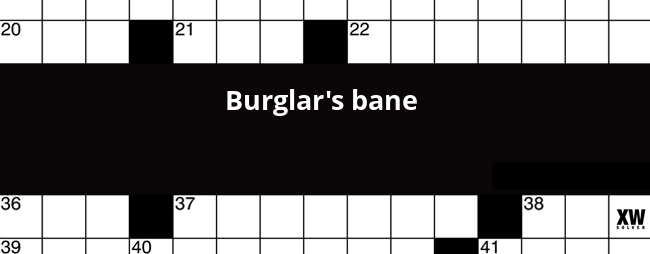 Burglar S Bane Crossword Clue